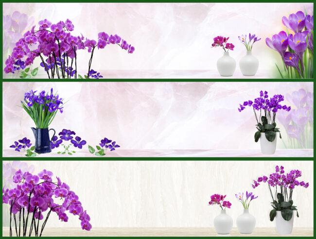 Mẫu hoa lan